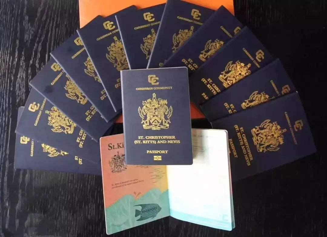 拥有一本圣卢西亚护照,你可以做什么?
