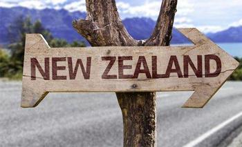 新西兰移民成功案例